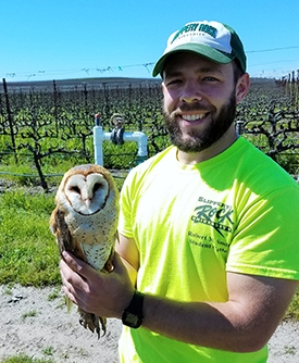Dane in a vineyard holding an owl