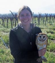 Allison Huysman - Holding an owl in a vineyard
