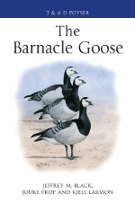 the barnacle goose book cover